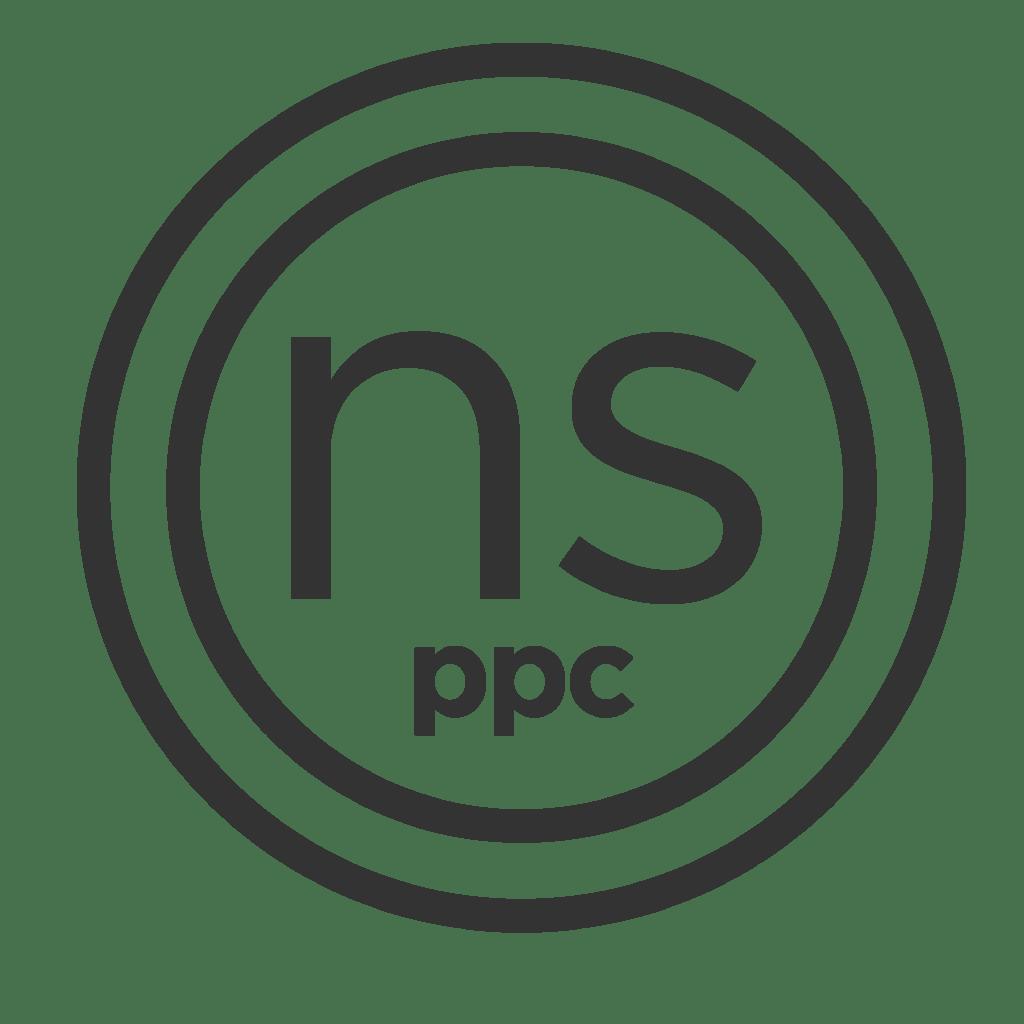 Nett_Solutions_PPC_Logo